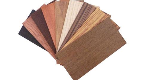 Gỗ nội thất mà DOORWAY sử dụng là loại gỗ gì? by kiến trúc Doorway ảnh tiêu biểu