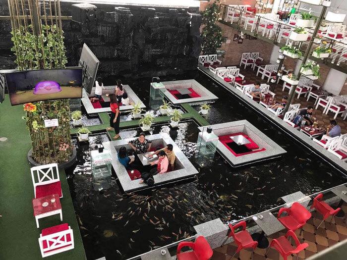 9- cá koi thú cưng 1 - 10 mẫu & ý tưởng thiết kế quán cafe nhỏ giá rẻ đẹp nhất 2019