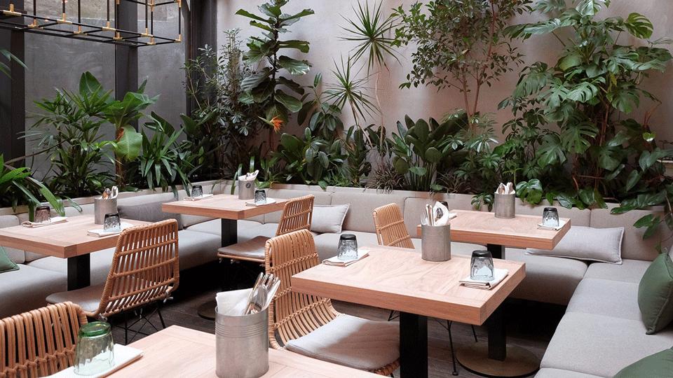 thiết kế quán cafe sân vườn diện tích nhỏ nhu the nao